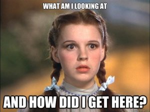 How-did-i-get-here-dorothy-wizrd-of-oz